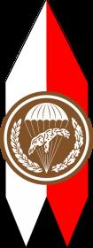 Koszulka 18 Batalion Powietrznodesantowy
