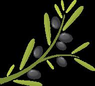 Koszulka polo męska z gałązką oliwną