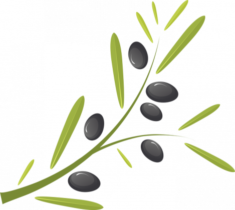 Koszulka damska z gałązką oliwną