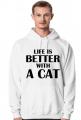 Bluza męska LIFE IS BETTER WITH A CAT