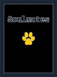 pet soulmate
