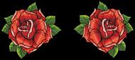 róże tee