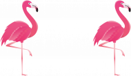 flamingi tee