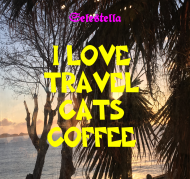 I love travel cats coffee