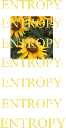 ENTROPHY ALL OVER
