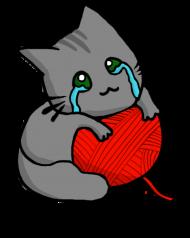 Koszulka Damska Kitku Płaczku
