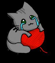 Bluza Dziewczęca Kitku Płaczku