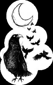 Koszulka męska Raven's Moon S
