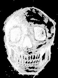 Koszulka męska Skull BW