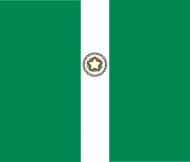 Bluza Flaga