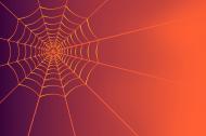 maseczka z pajęczyną