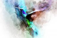 Koliber dark