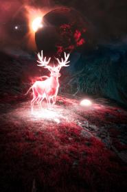 Jeleń Red Moon