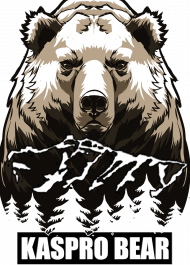 Koszulka Męska Kaspro Bear