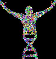 Bluza Męska Rozpiana z Kapturem *DNA