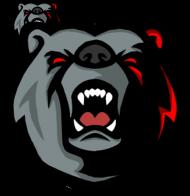 Niedźwiedzia Nerka