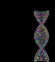 IUPAC nucleotide code