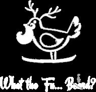 Koszulka czarna The Bushy Beard ptak