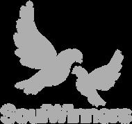 SoulWinner II