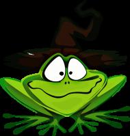 Koszulka żaba M01