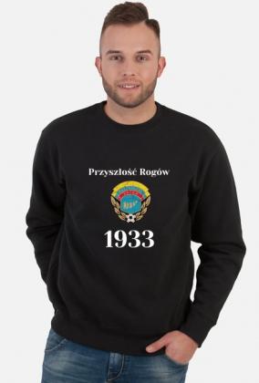 Bluza 1933