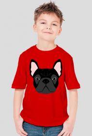 Buldog Francuski T-shirt dla chłopca