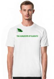 THE KINGDOM OF KABUTO