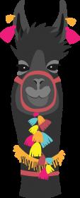 czarna lama koszulka męska 2