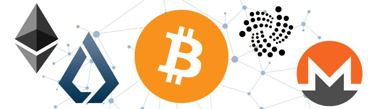 Crypto Gadget - sklep dla kryptomaniaków