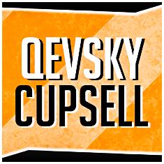 QevskyShop