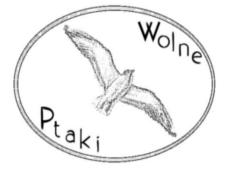 Wolne ptaki